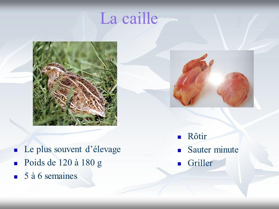 La caille Rôtir Sauter minute Griller Le plus souvent d'élevage