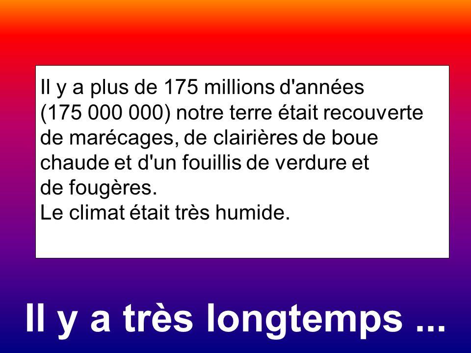 Il y a très longtemps ... Il y a plus de 175 millions d années