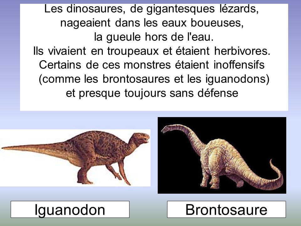 Iguanodon Brontosaure Les dinosaures, de gigantesques lézards,