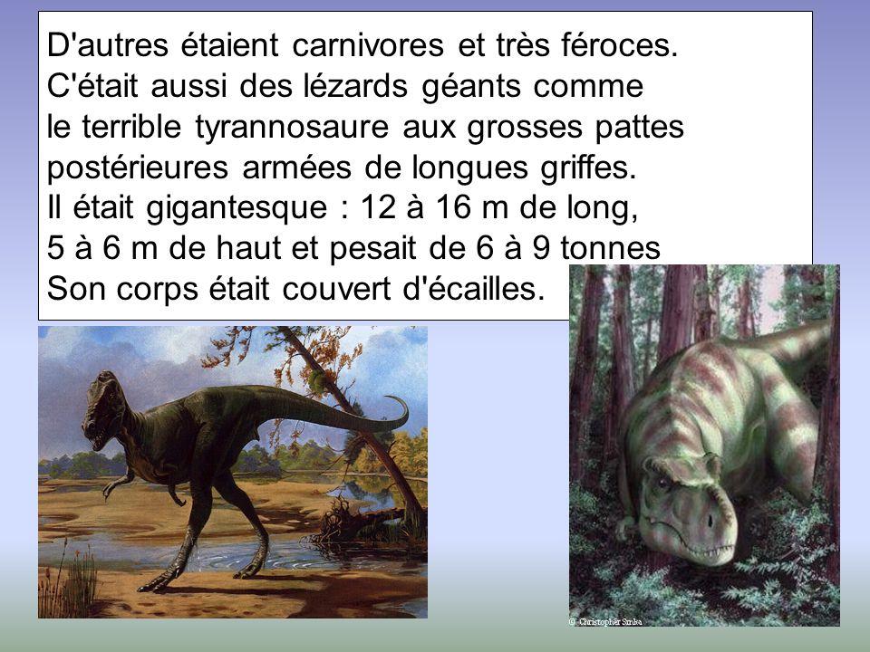 D autres étaient carnivores et très féroces.