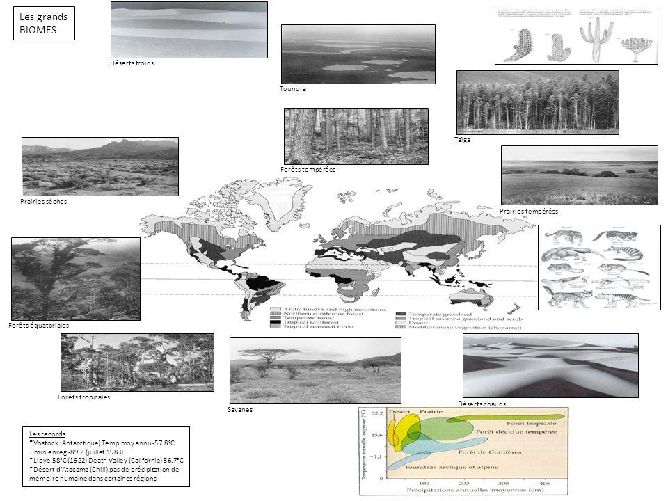Les grands BIOMES Déserts froids Toundra Taïga Forêts tempérées