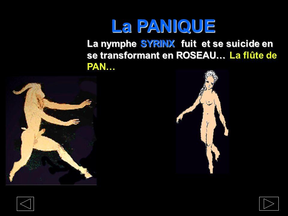 La PANIQUE La nymphe SYRINX fuit et se suicide en se transformant en ROSEAU… La flûte de PAN…