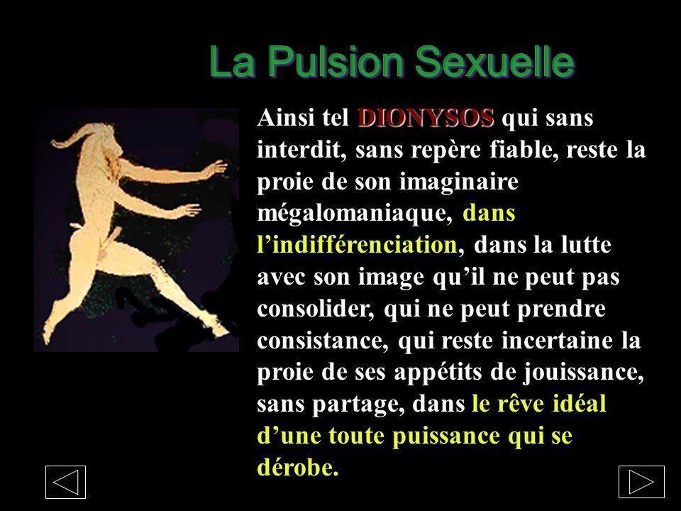 La Pulsion Sexuelle