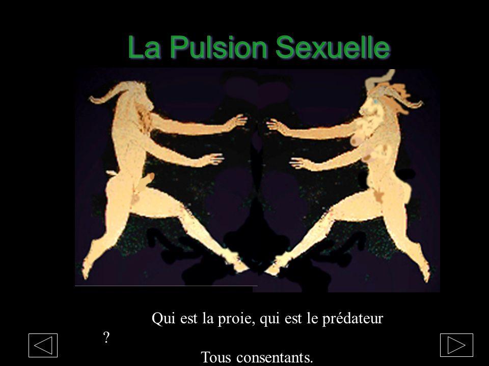 La Pulsion Sexuelle Qui est la proie, qui est le prédateur