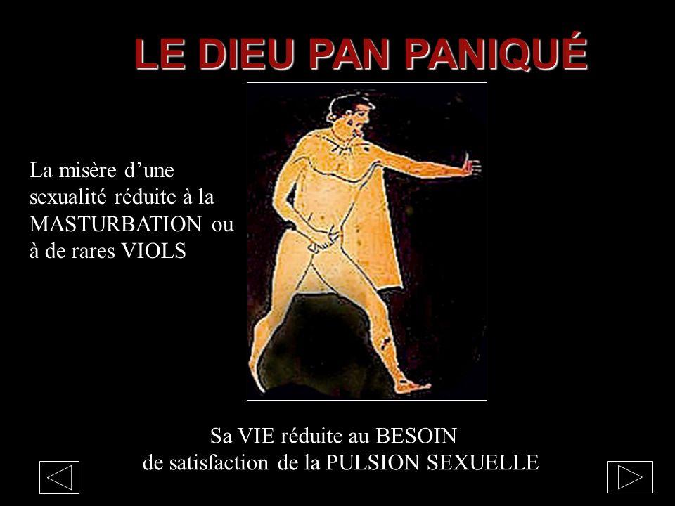 LE DIEU PAN PANIQUÉ La misère d'une sexualité réduite à la MASTURBATION ou à de rares VIOLS. Sa VIE réduite au BESOIN.