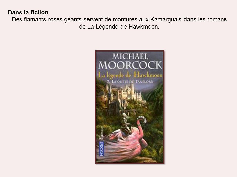 Dans la fiction Des flamants roses géants servent de montures aux Kamarguais dans les romans de La Légende de Hawkmoon.