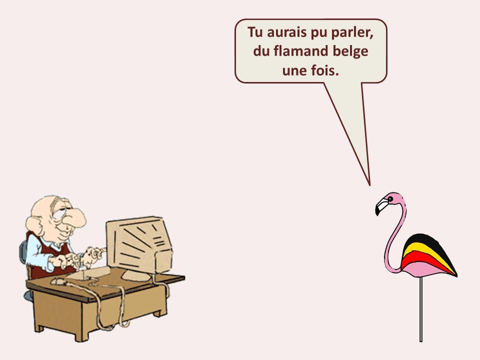 Tu aurais pu parler, du flamand belge une fois.
