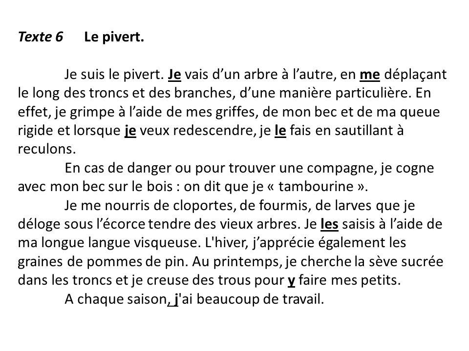 Texte 6 Le pivert.