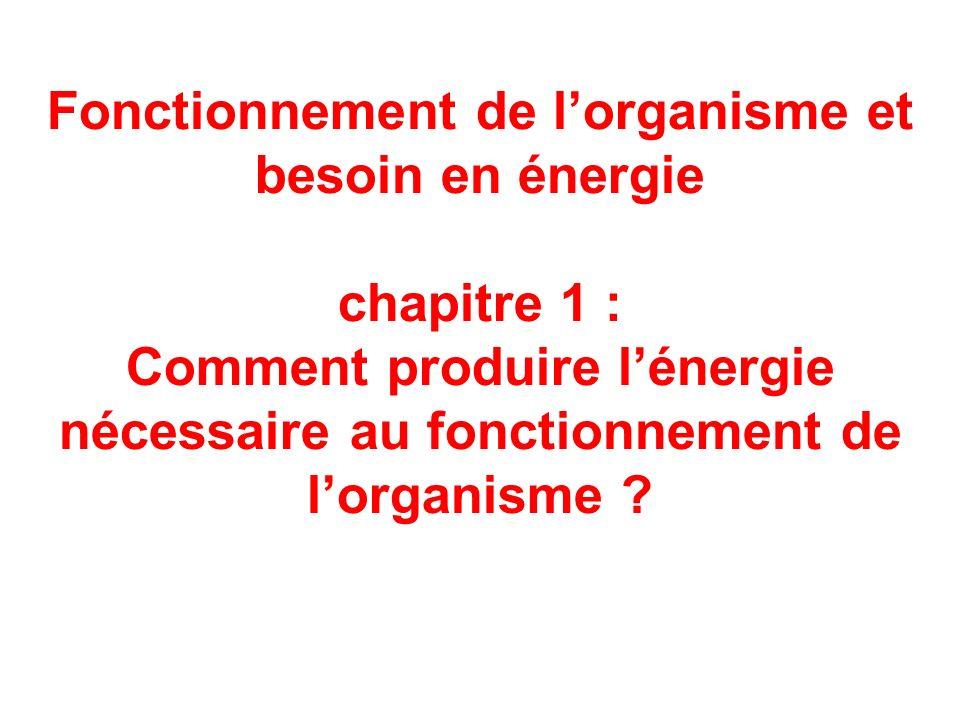 Fonctionnement de l'organisme et besoin en énergie chapitre 1 : Comment produire l'énergie nécessaire au fonctionnement de l'organisme