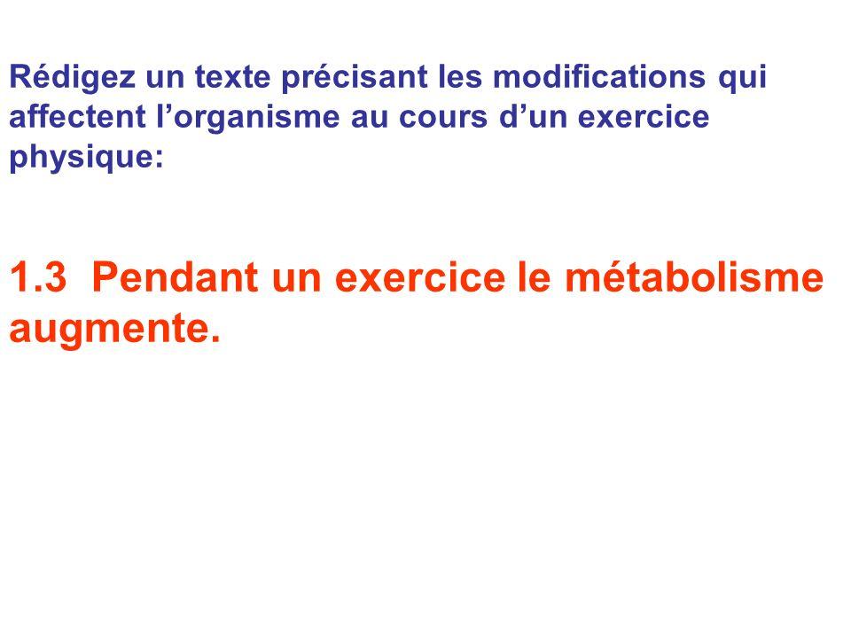 1.3 Pendant un exercice le métabolisme augmente.