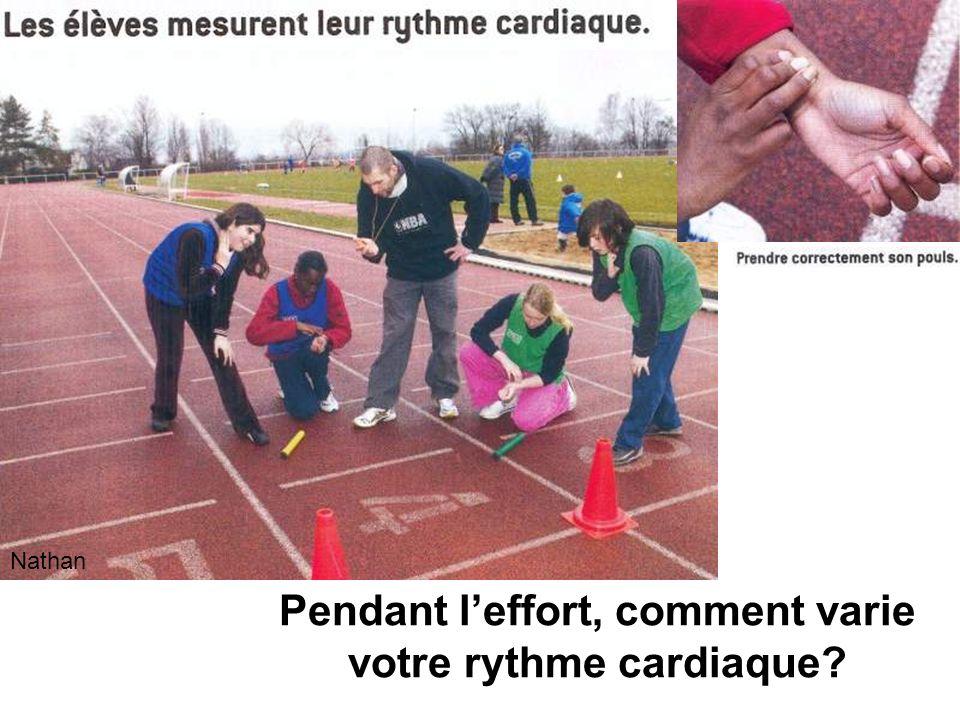 Pendant l'effort, comment varie votre rythme cardiaque