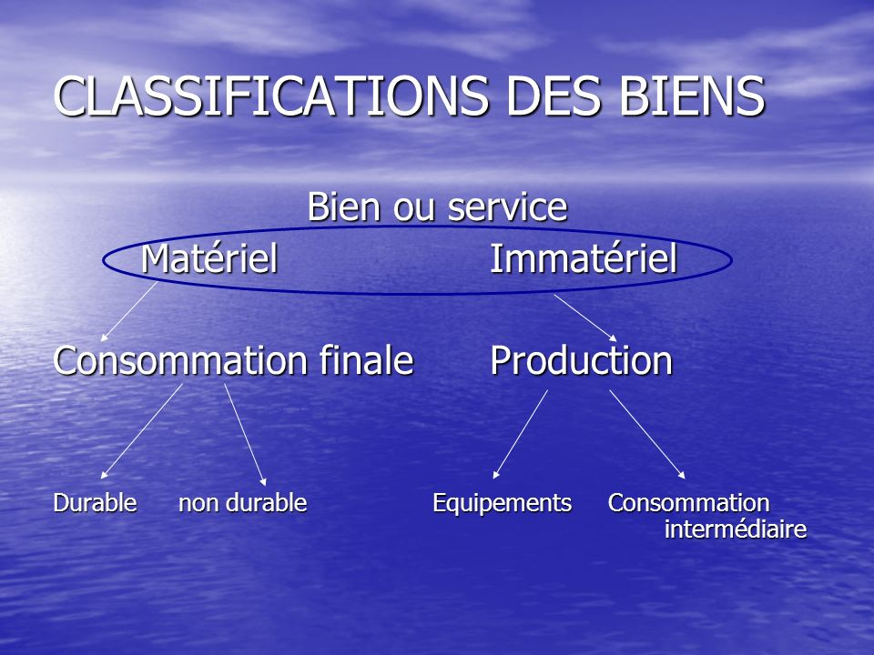 CLASSIFICATIONS DES BIENS
