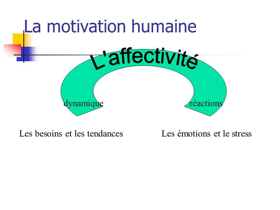 La motivation humaine L affectivité dynamique réactions