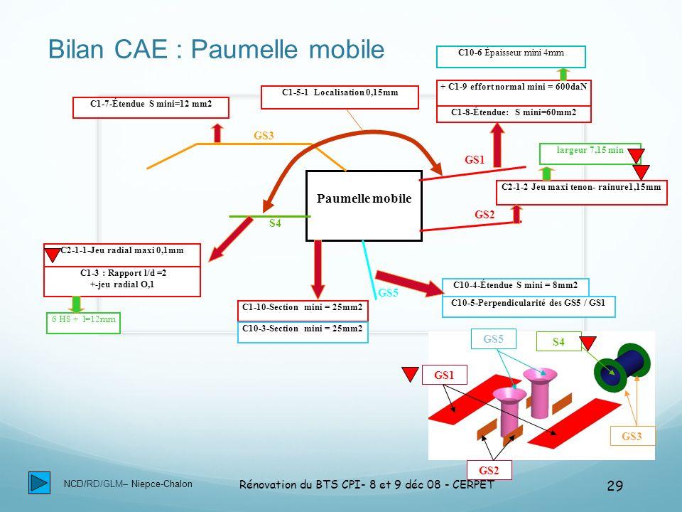 Bilan CAE : Paumelle mobile