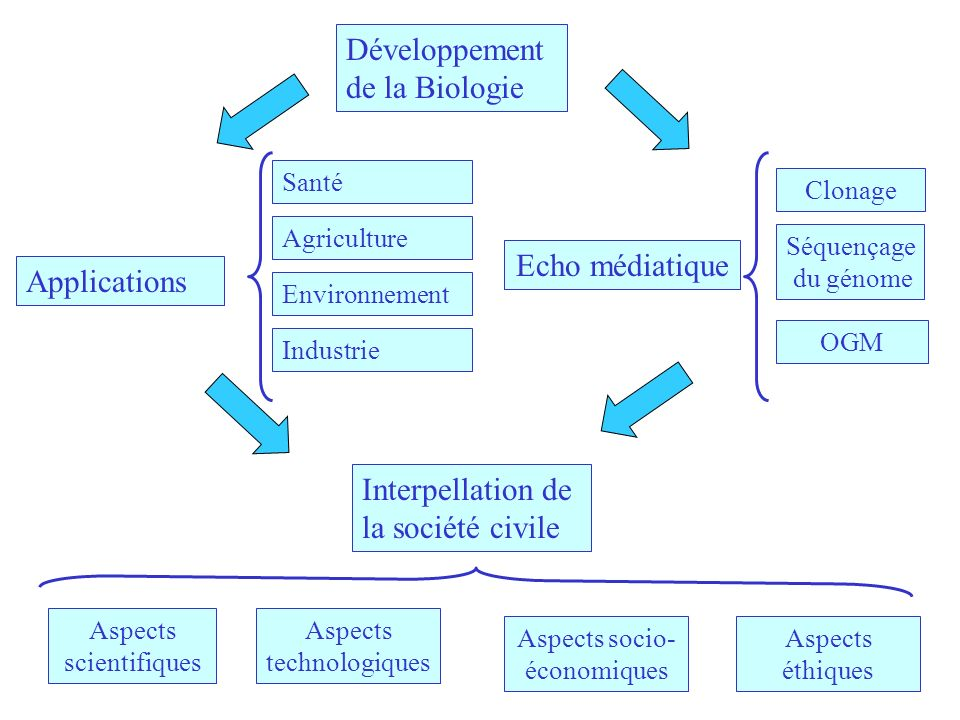 Développement de la Biologie Echo médiatique Applications