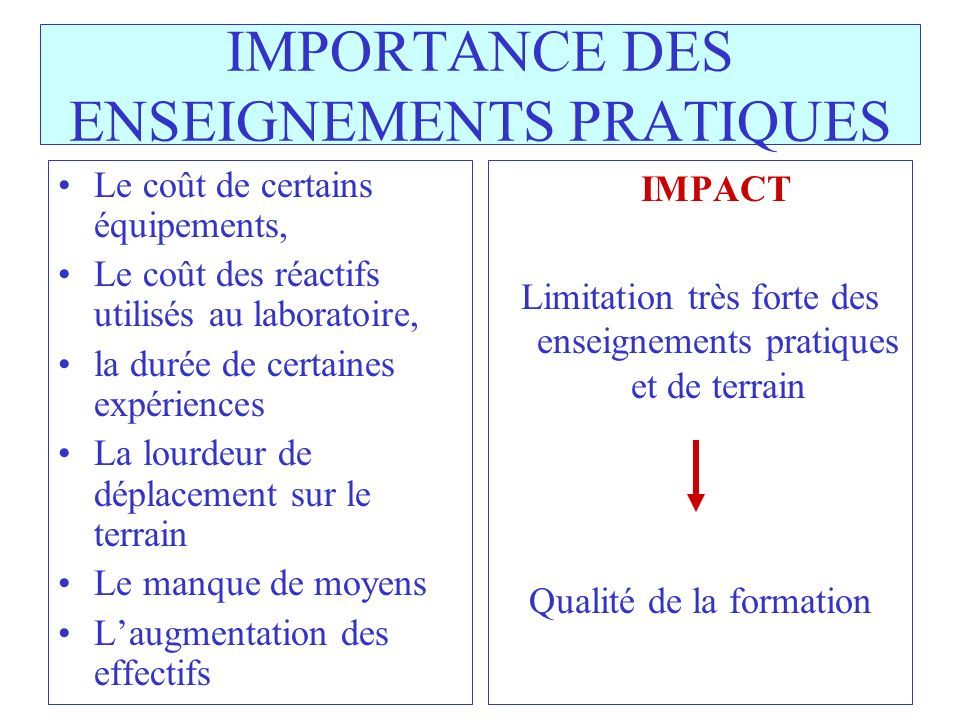 IMPORTANCE DES ENSEIGNEMENTS PRATIQUES