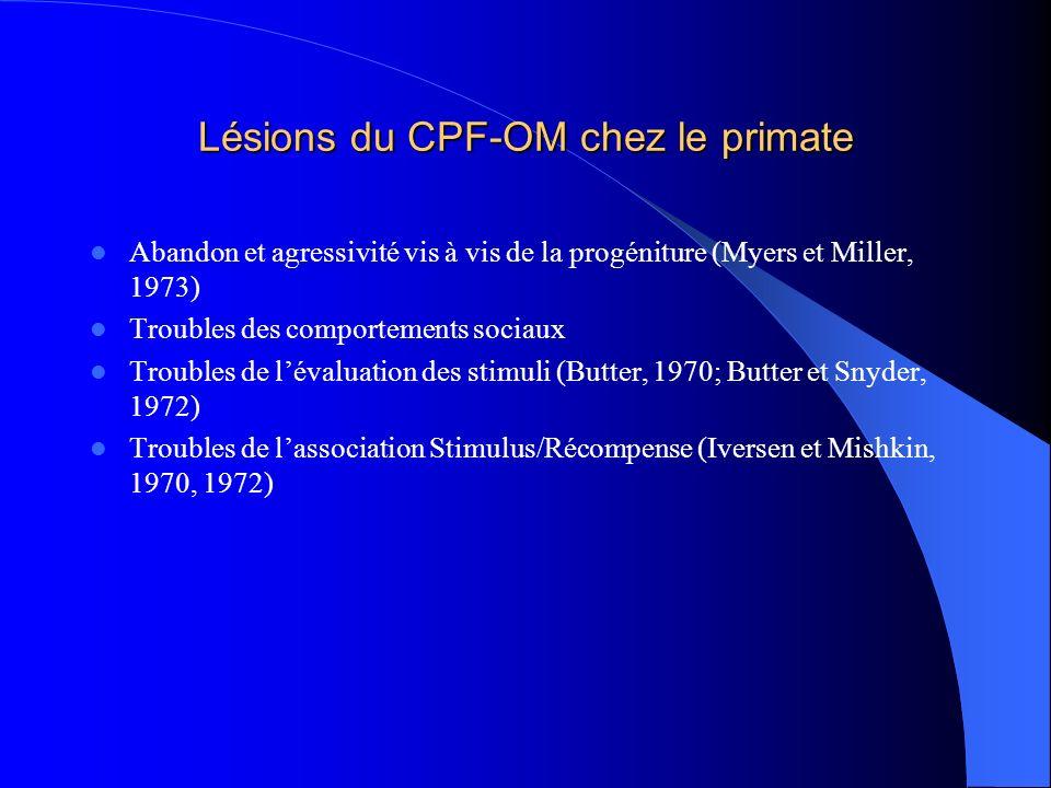 Lésions du CPF-OM chez le primate
