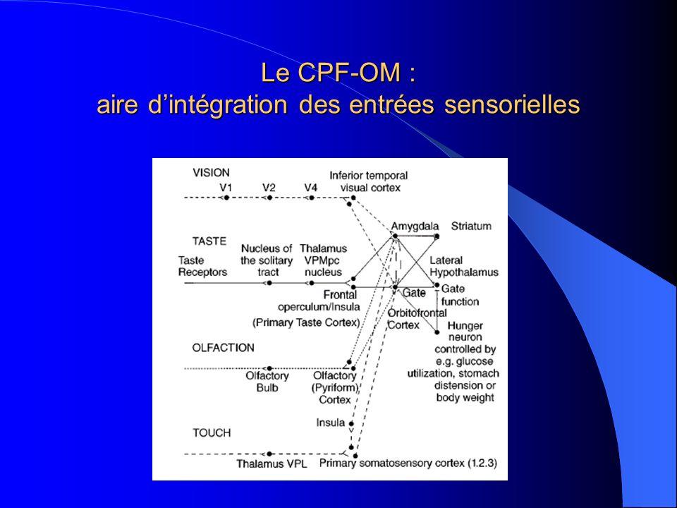 Le CPF-OM : aire d'intégration des entrées sensorielles