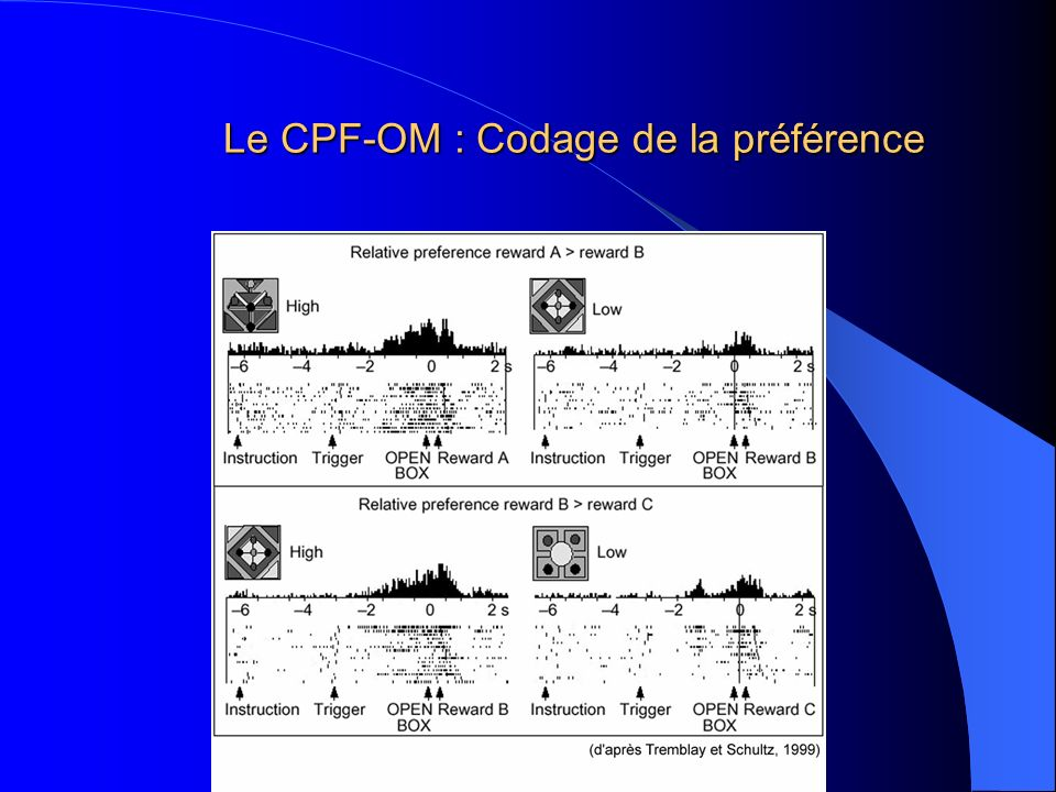 Le CPF-OM : Codage de la préférence