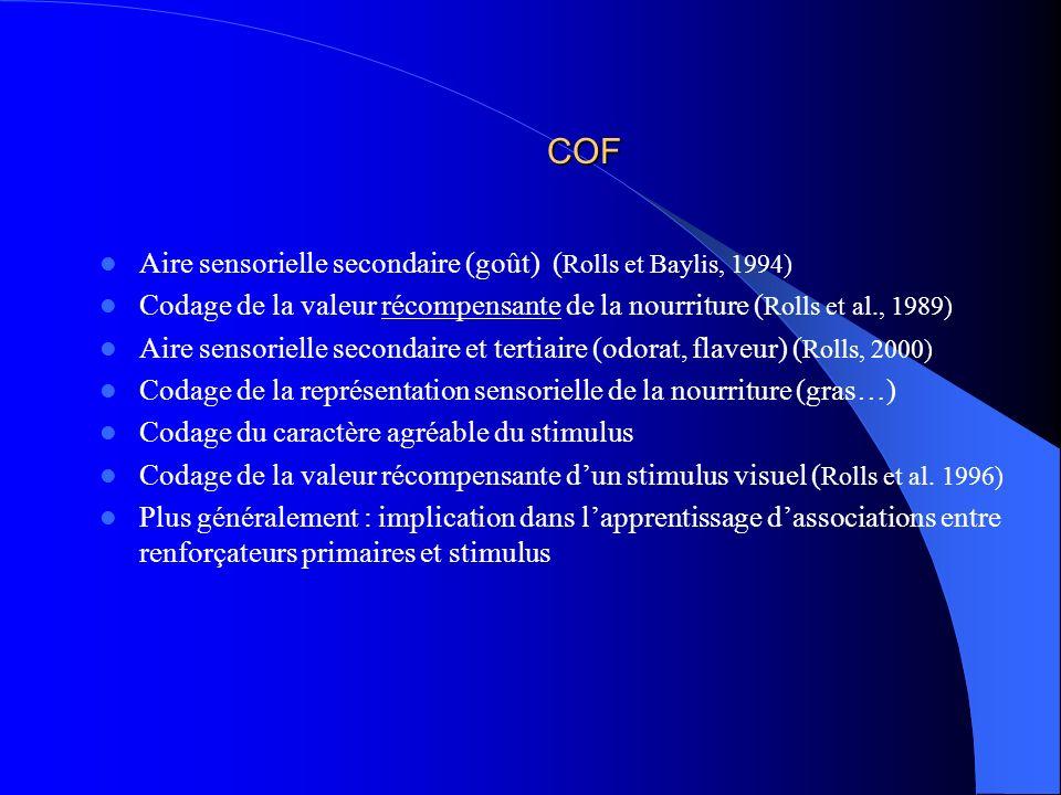 COF Aire sensorielle secondaire (goût) (Rolls et Baylis, 1994)