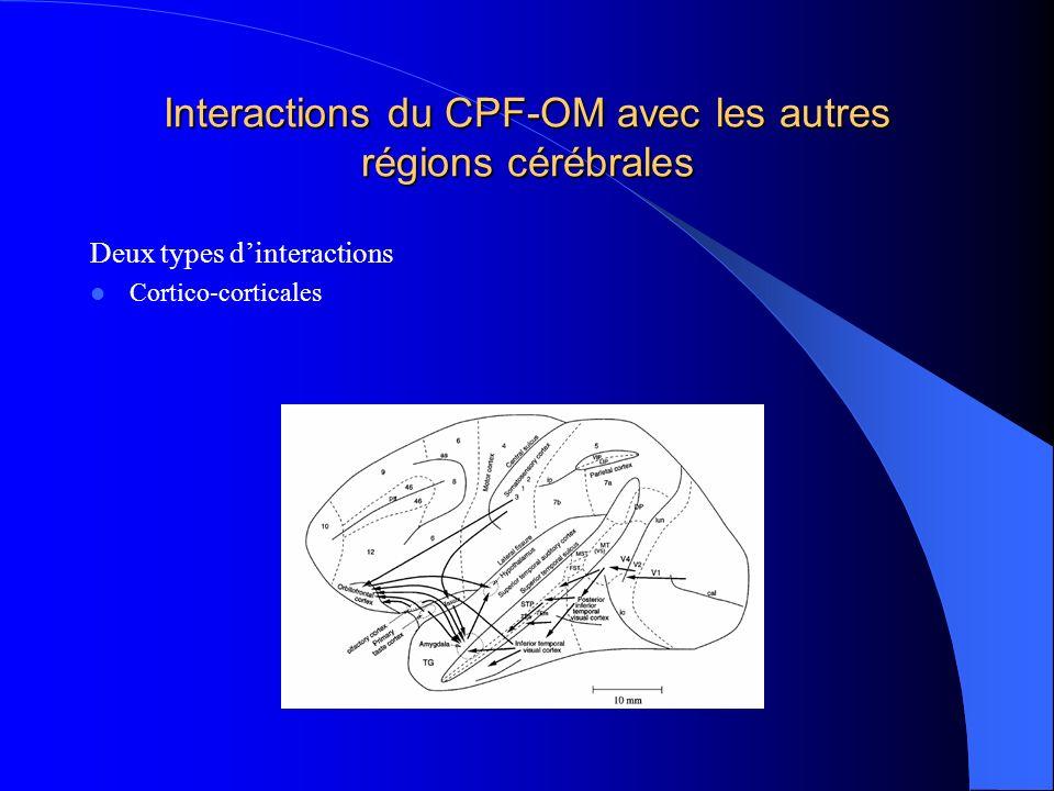 Interactions du CPF-OM avec les autres régions cérébrales