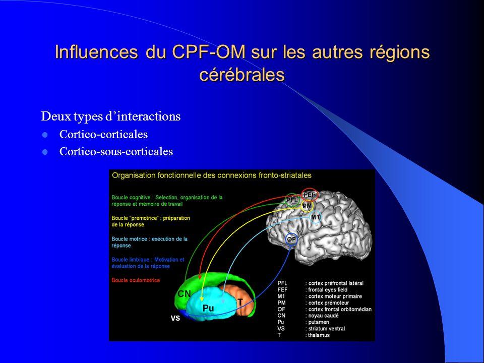 Influences du CPF-OM sur les autres régions cérébrales