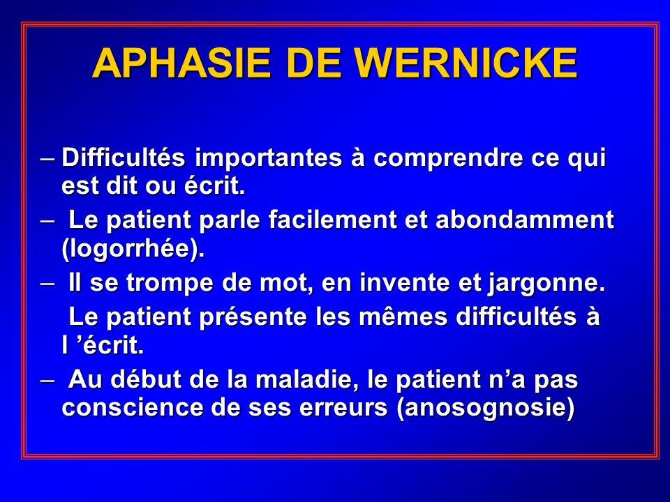 APHASIE DE WERNICKE Difficultés importantes à comprendre ce qui est dit ou écrit. Le patient parle facilement et abondamment (logorrhée).