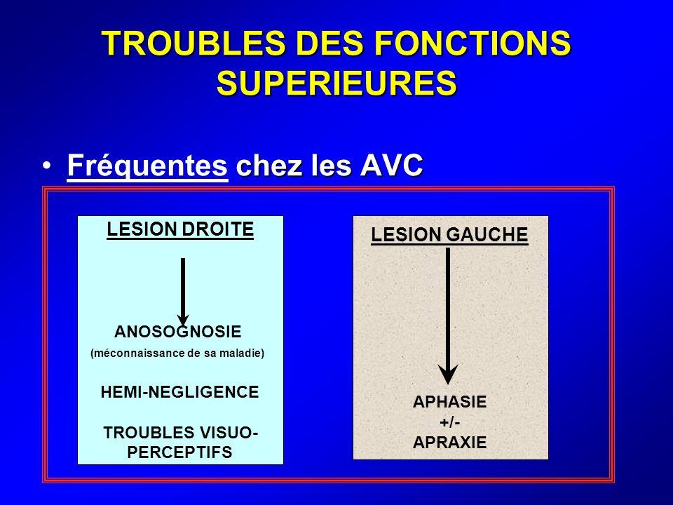 TROUBLES DES FONCTIONS SUPERIEURES