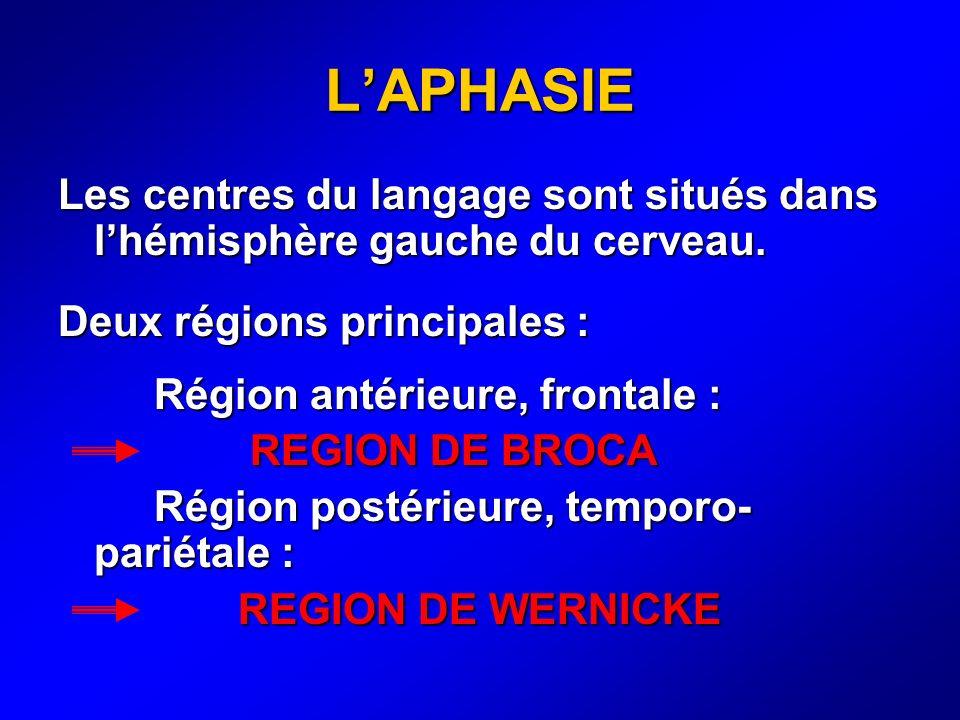 L'APHASIE Les centres du langage sont situés dans l'hémisphère gauche du cerveau. Deux régions principales :