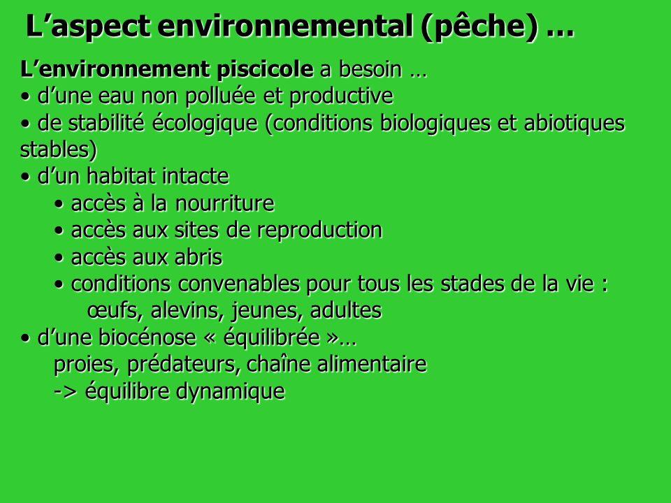 L'aspect environnemental (pêche) …