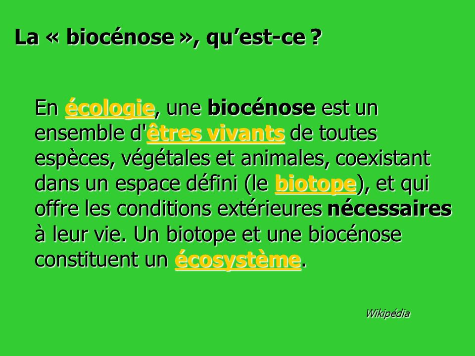 La « biocénose », qu'est-ce