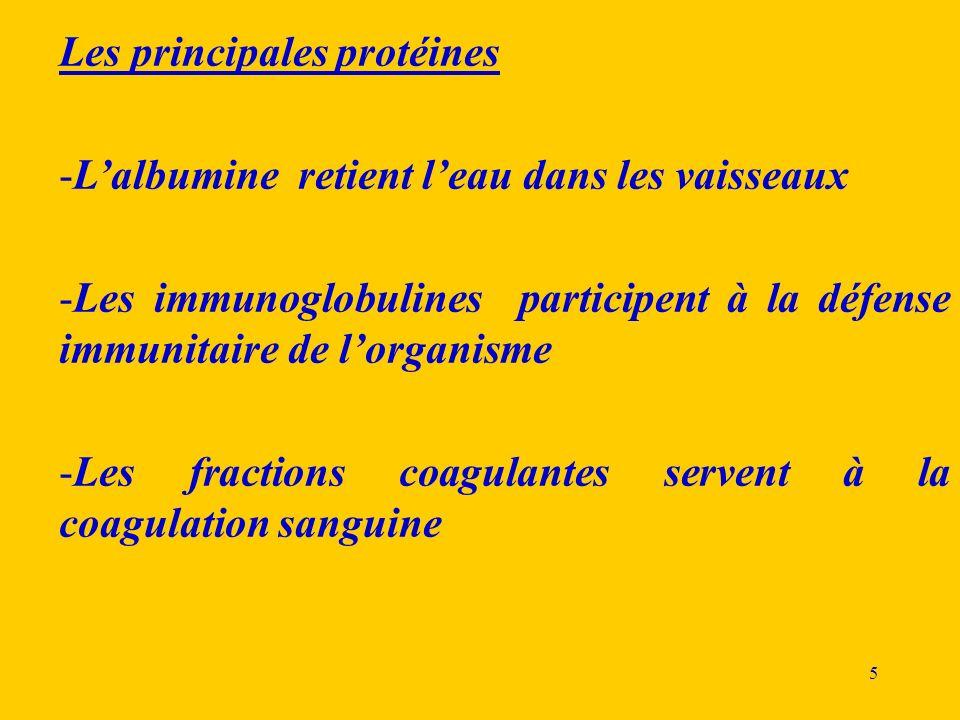 Les principales protéines