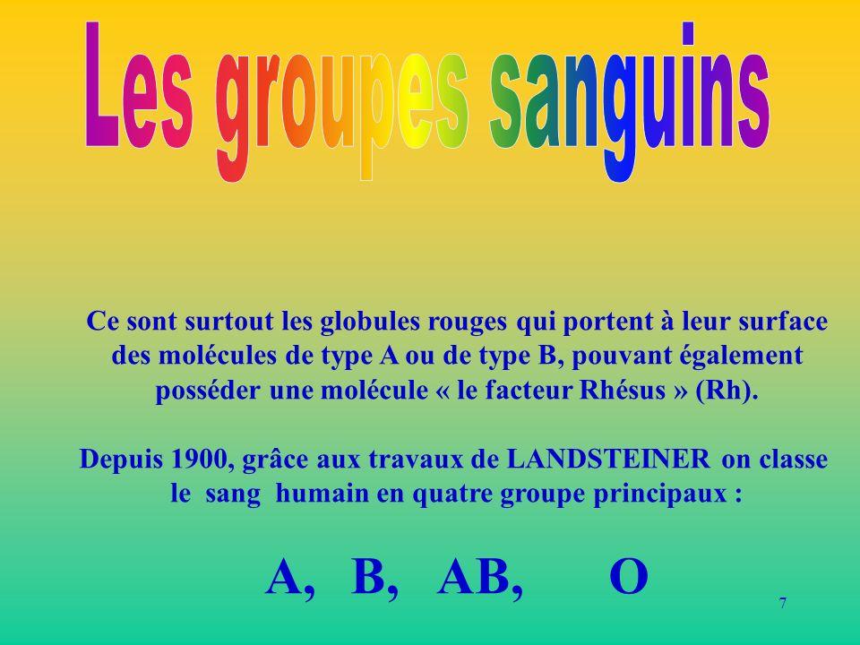Les groupes sanguins A, B, AB, O