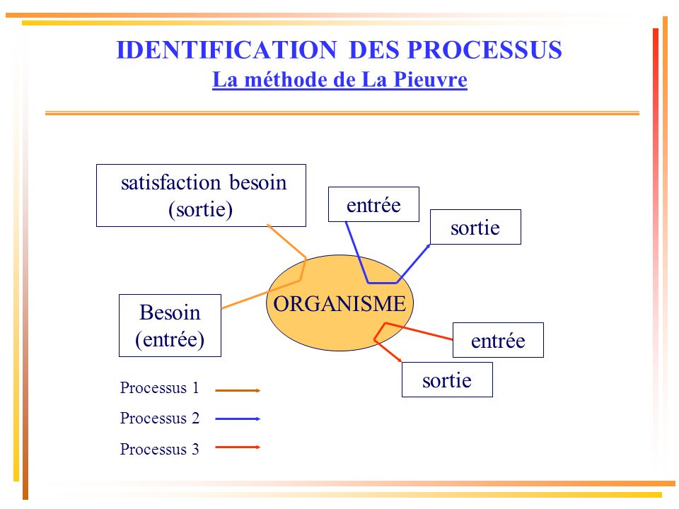 IDENTIFICATION DES PROCESSUS La méthode de La Pieuvre