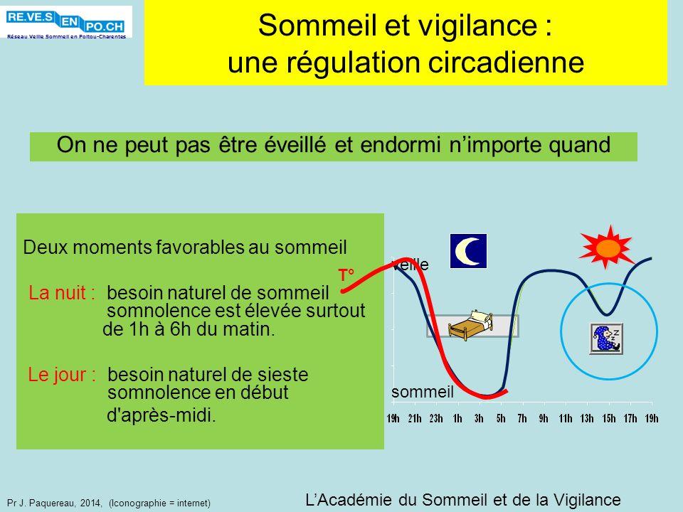 Sommeil et vigilance : une régulation circadienne