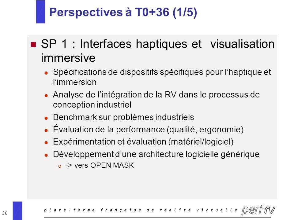 SP 1 : Interfaces haptiques et visualisation immersive