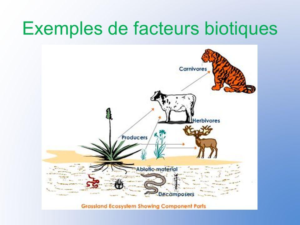 Exemples de facteurs biotiques
