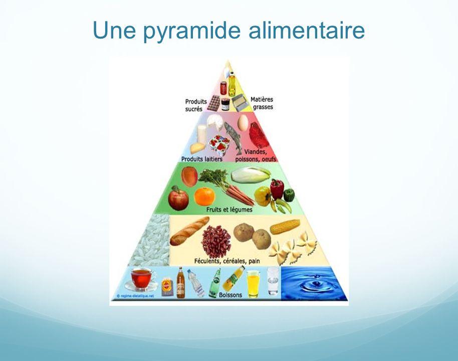 Une pyramide alimentaire