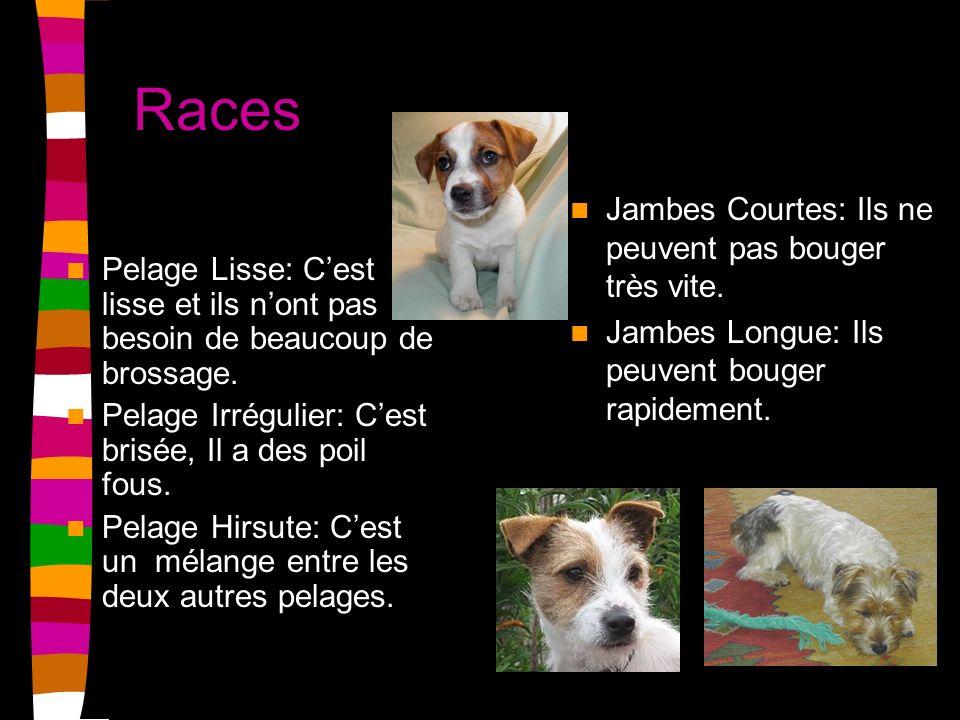 Races Jambes Courtes: Ils ne peuvent pas bouger très vite.