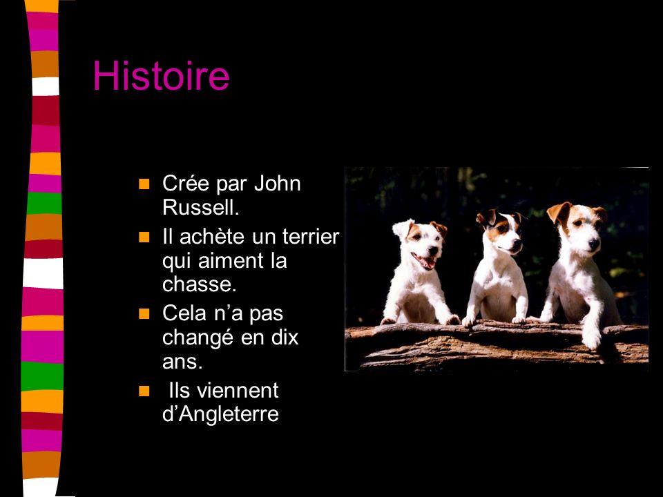 Histoire Crée par John Russell.