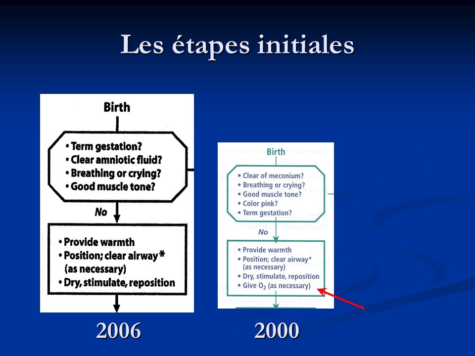 Les étapes initiales 2006 2000