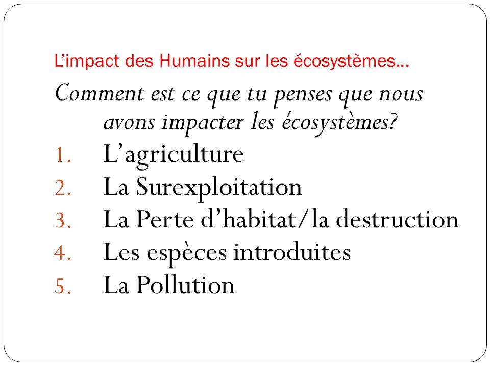 L'impact des Humains sur les écosystèmes...
