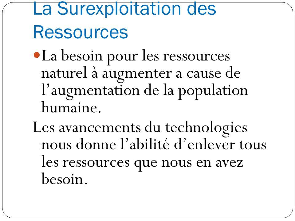 La Surexploitation des Ressources