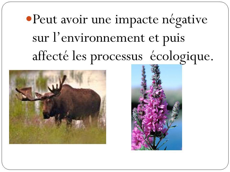 Peut avoir une impacte négative sur l'environnement et puis affecté les processus écologique.