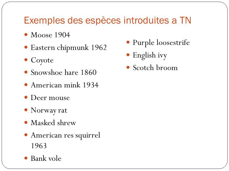 Exemples des espèces introduites a TN