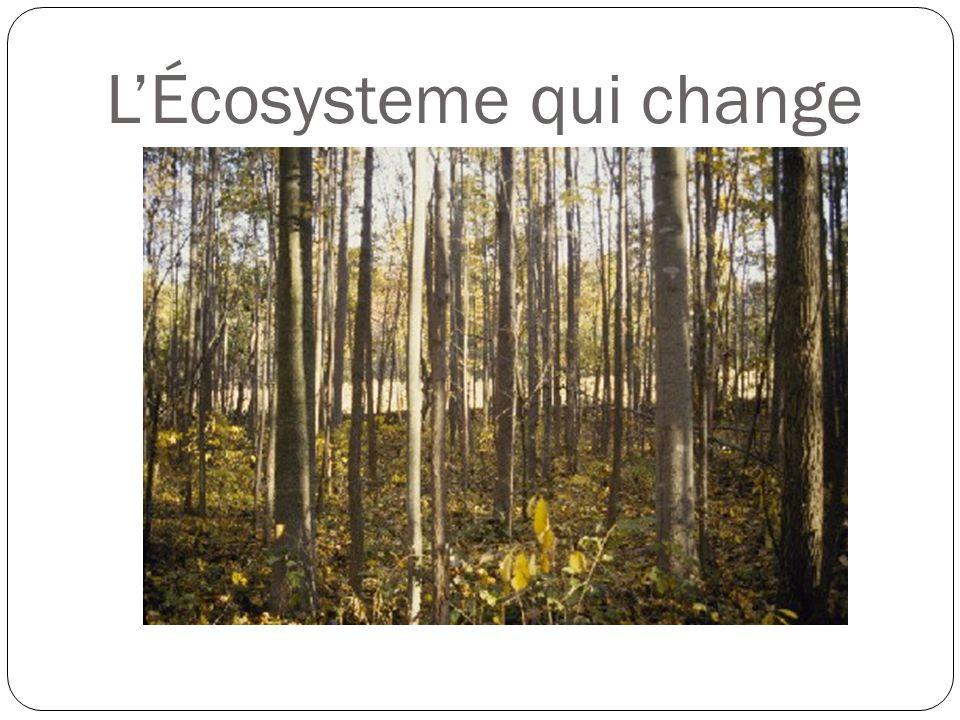 L'Écosysteme qui change