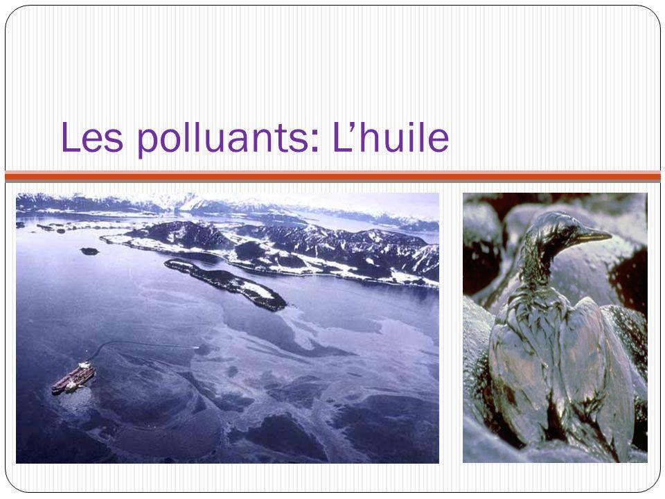 Les polluants: L'huile