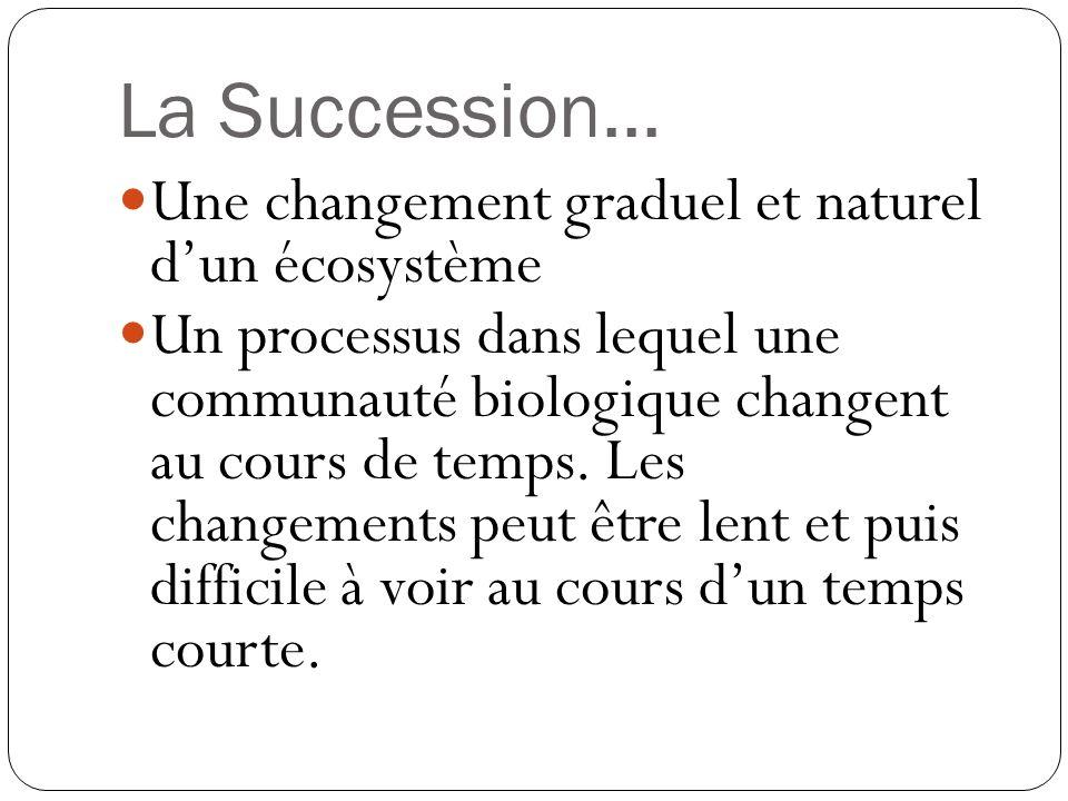 La Succession... Une changement graduel et naturel d'un écosystème