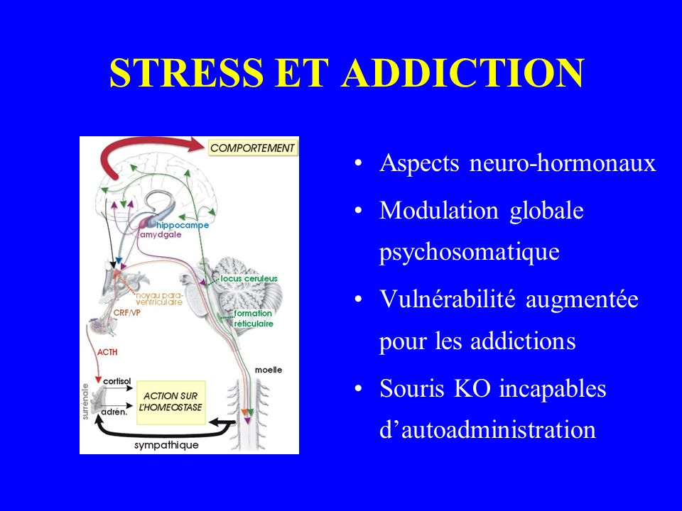 STRESS ET ADDICTION Aspects neuro-hormonaux