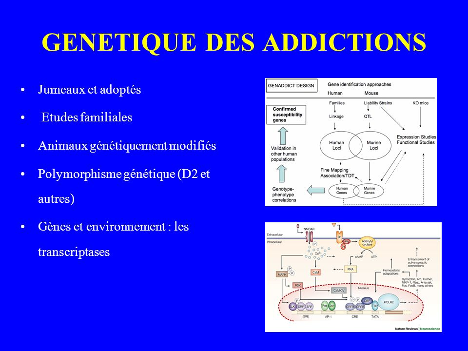 GENETIQUE DES ADDICTIONS